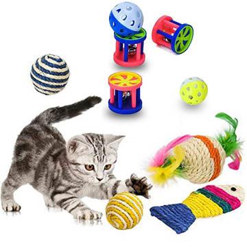 meilleurs jouets pour chat