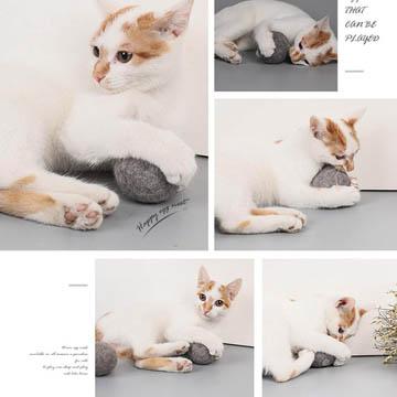 meilleurs jouets d'herbe à chat