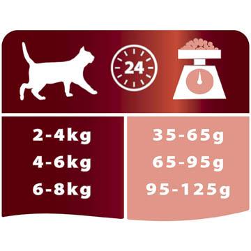 meilleures croquettes de chats protéinées