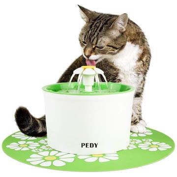 meilleure fontaine à eau pour chat