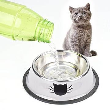 meilleure gamelle pour chat