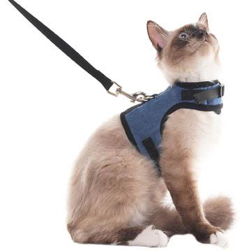 meilleurs harnais pour chat